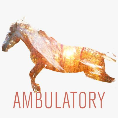 Ambulatory
